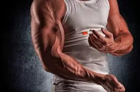Know the working mechanism of anabolic components