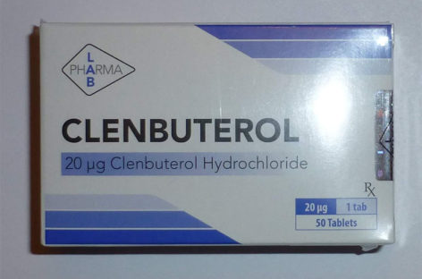 Learn Everything About Clenbuterol Hydrochloride Side Effects And Usage Benefits